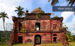 Viper-Island