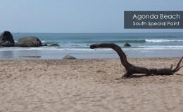 Agonda-Beach-3
